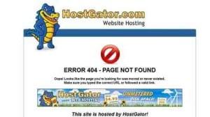 site error message